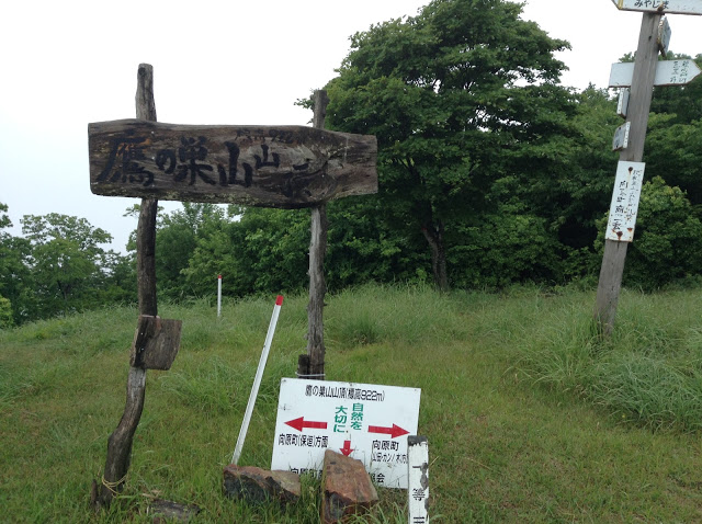 トレイルランニングコース 鷹ノ巣山山頂
