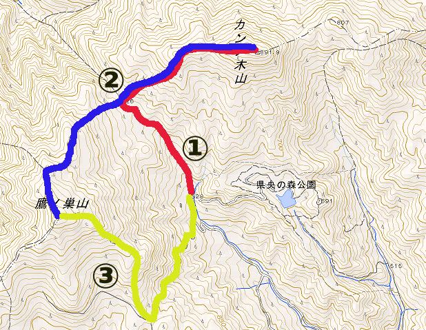 トレイルランニングコース 鷹ノ巣山、カンノ木山縦走