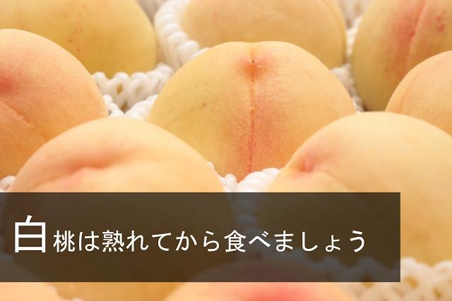 清水白桃を熟れる前に食べてしまいました