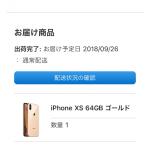 iPhoneXS人気ないのか?